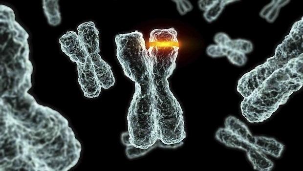 tüdőrák genetikai mutáció papilloma a láb kezelésénél