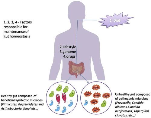 Papilloma vírus tünetei és kezelése