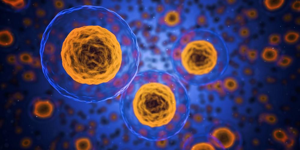 A limfómák tünetei és okai