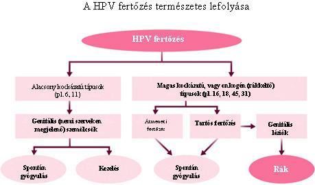 hpv magas kockázatú tünetek
