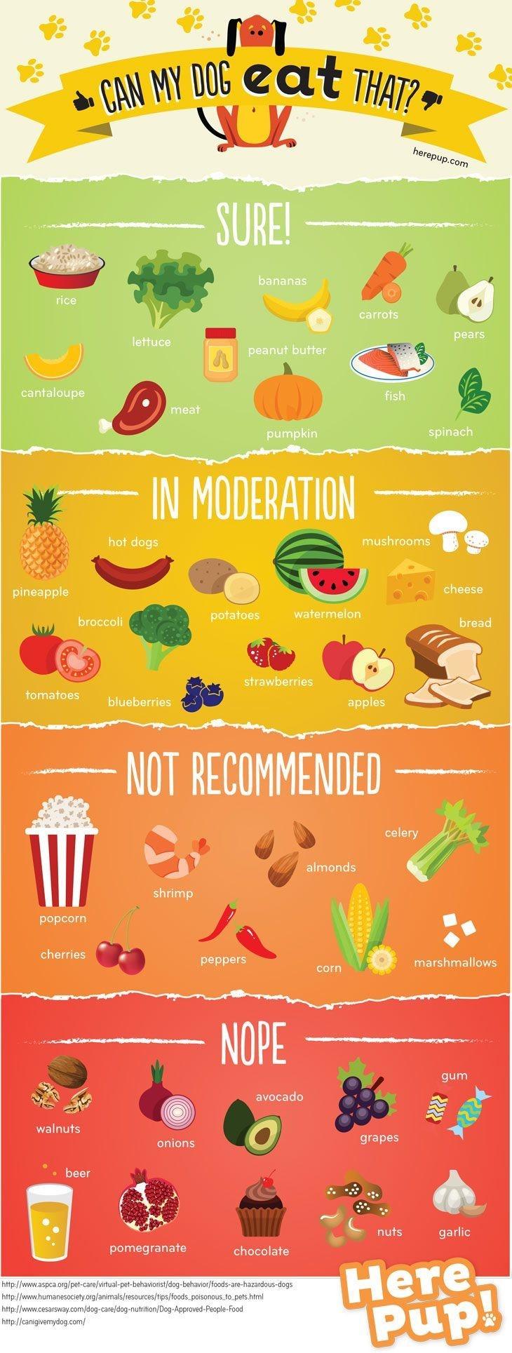 Amit nem ajánlott prosztatagyulladás esetén enni