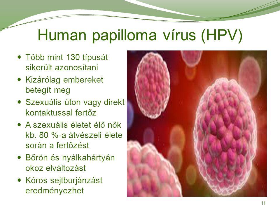 papillomavírus megnyilvánulása