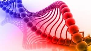 Örökölhető a rák? Örökségből ritkán lesz daganat   Rákgyógyítás