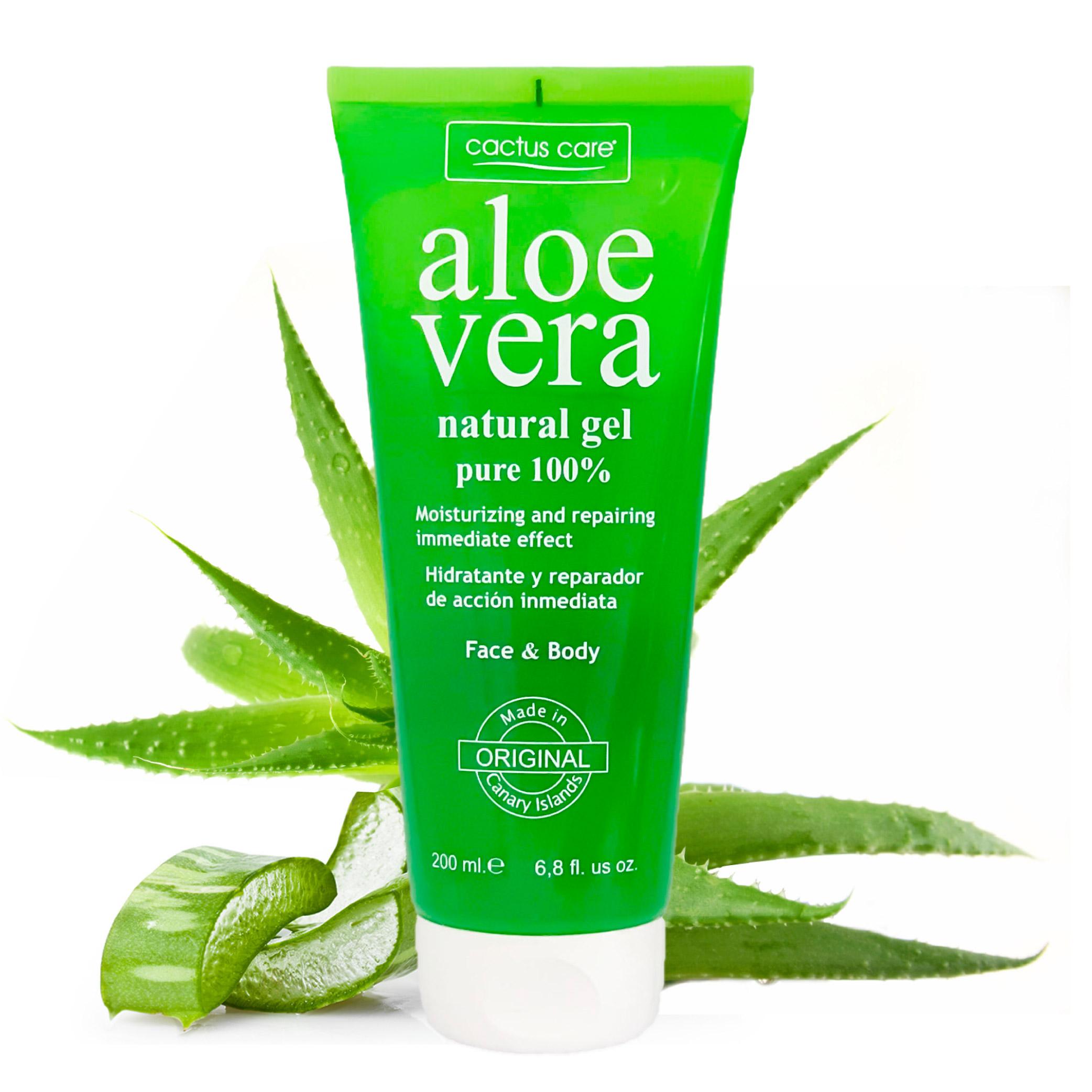 Aloe vera | Csodanövény