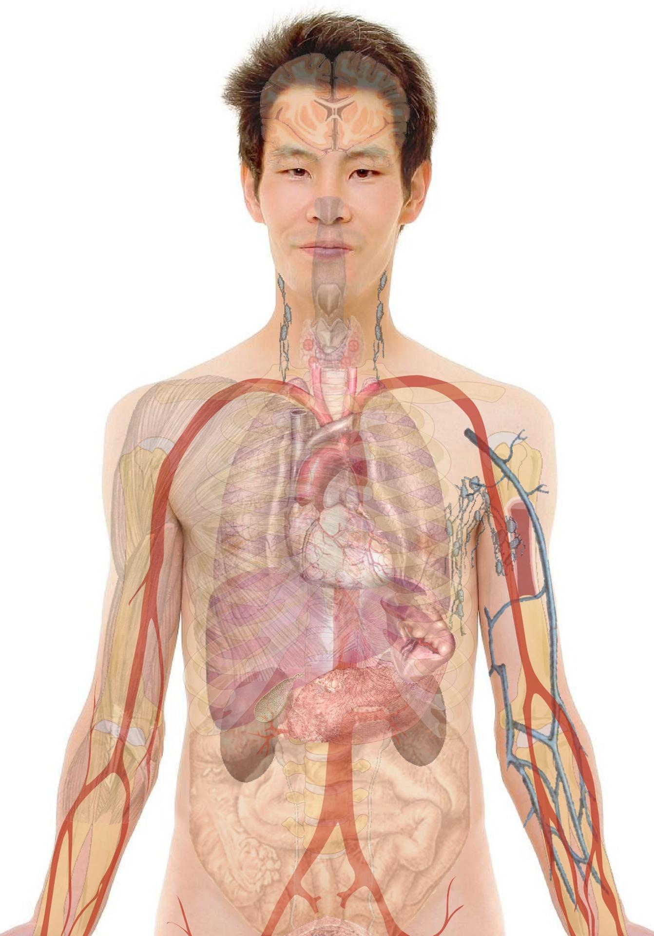 paraziták eltávolítása Crohn-betegség helmintás kezelése