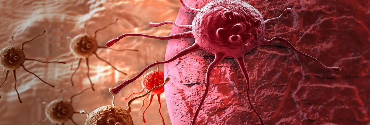 női nemi szemölcs képek A papilloma vírus a férfiakat is érinti