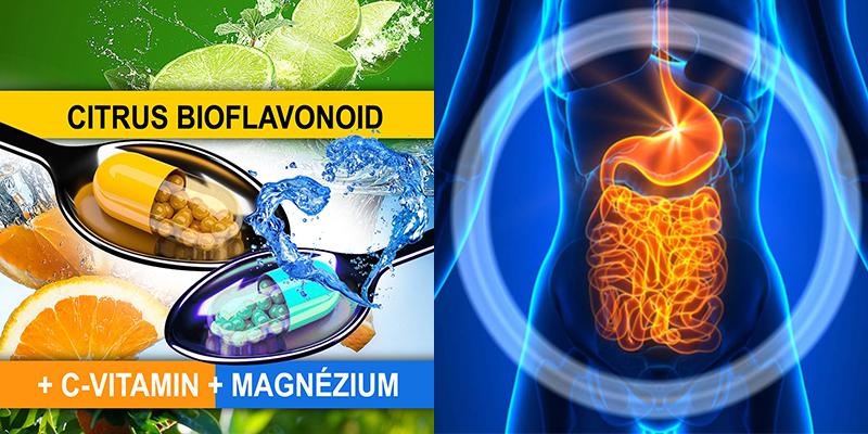 vastagbél méregtelenítő vitaminok