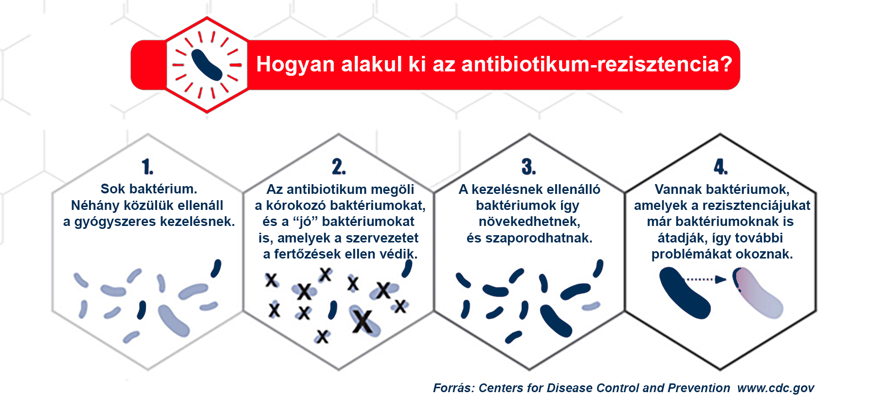 antibiotikumokkal szemben rezisztens baktériumok