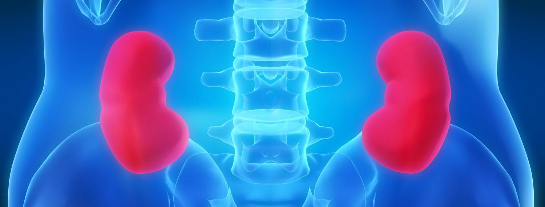 genetikailag terjedő rák humán papillomavírus kezelésére szolgáló gyógyszerek