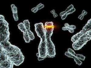 rák és genetikai mutációk