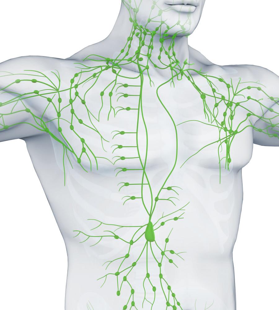 Leukémia, limfóma: mi folyik az ereinkben?