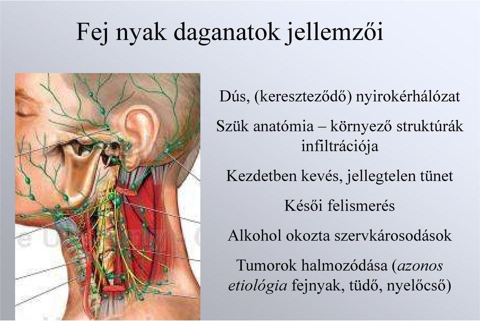 A hasnyálmirigyrák tünetei | 1001eskuvoifoto.hu